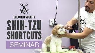 Download Groomer Society| Shih-Tzu Shortcuts With Joshua Morales (Live Seminar Preview) Video