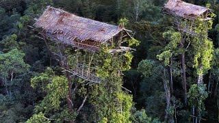 Download Begini Kehidupan SukuKanibaI Pemakan Manusia di Pedalaman Papua - Keajaiban Dunia Nyata Video