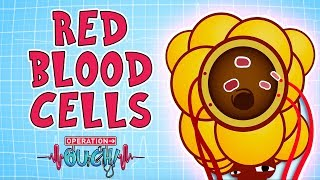 Download Operation Ouch - Red Blood Cells | Biology Facts for Kids Video