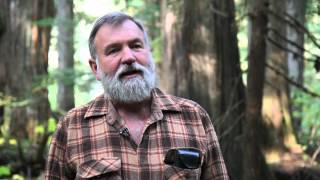 Download Craig Pettitt on Incommapleux Rain Forest under threat from IPP application Video