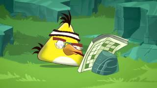 Download Angry Birds Toons: ″Chuck Time″ Video
