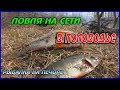 Download ЛОВЛЯ НА СЕТИ В ПОЛОВОДЬЕ / РЫБАЛКА НА ПЕЧОРЕ /FISHING WITH NETS IN THE WATER/FISHING ON THE PECHORA Video