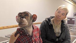 Download Шимпанзе Микки и дрессировщик Мурад Хыдыров: гости Ижевского циркового фестиваля Video
