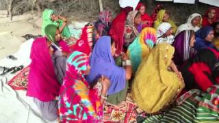 Download Making a difference in Pakistan (FAO) Video