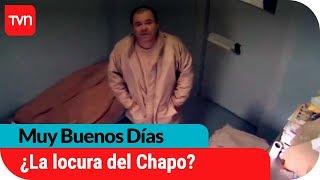 Download ¿Alucinaciones? Chapo Guzmán se estaría volviendo loco en prisión | Muy buenos días Video