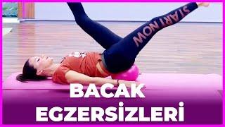 Download Ebru Şalli ile Zinde Kal - Bacak Egzersizleri Video