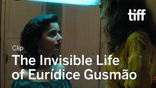 Download INVISIBLE LIFE OF EURÍDICE GUSMÃO Clip | TIFF 2019 Video