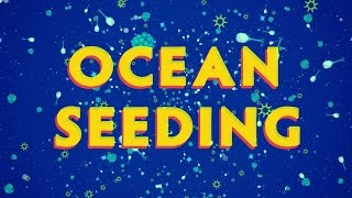 Download Ocean Seeding - A New Technology that can Save Marine Life Video