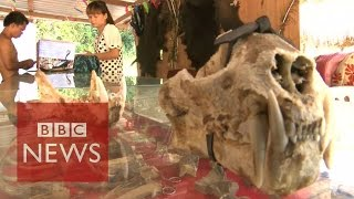 Download Undercover in Myanmar's Sin city where anything goes - BBC News Video