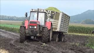 Download Siláže 2017 Claas Jaguar Zetor,Case,Tatra,John Deere Video