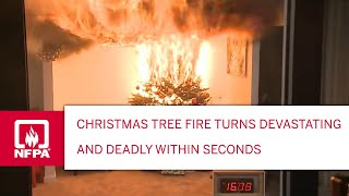 Download Christmas tree fires can turn devastating and deadly within seconds Video