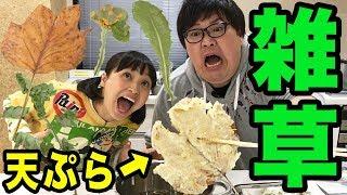 Download 【人気声優 金田朋子の絶叫料理】雑草を揚げて食べたら大惨事にwww Video