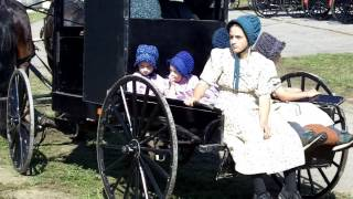 Download Differences Between Amish and Horse & Buggy Mennonites Video