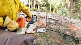 Download This Technique Could Save Your Chainsaw Video