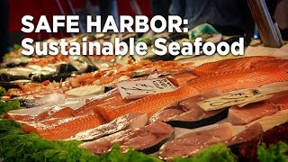 Download Safe Harbor: Sustainable Seafood - Future Thought Leaders Series Video