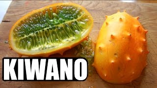 Download KIWANO | HORNED MELON Taste Test | FRUITY FRUITS Video