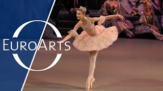 Download Piotr Tchaikovsky: The Nutcracker - Ballet in two acts (HD 1080p) Video