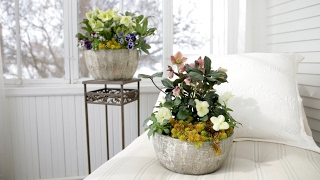 Download Spring Container Inspiration (Full Version) // Garden Answer Video