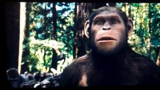 Download Rise of the planet of the apes Caesar is home Video