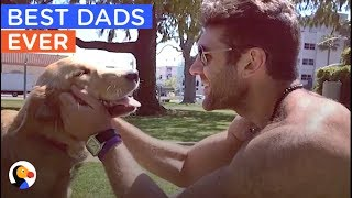 Download BEST Animal Dads of ALL TIME Compilation | The Dodo Daily Video
