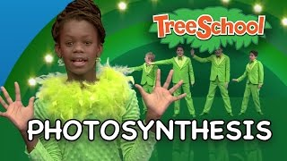 Download Photosynthesis | Two Little Hands TV | Educational | Kids Songs Video