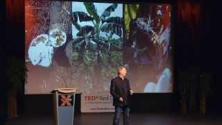 Download Pushing Boundaries in Agriculture | Rob Saik | TEDxRedDeer Video