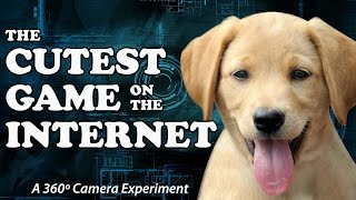 Download 360 Camera + Puppies = The Cutest Game On The Internet Video