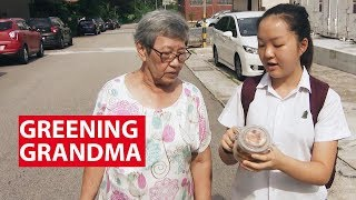 Download Getting Grandma To Go Zero-Waste And Plastic-Free | On The Red Dot | CNA Insider Video