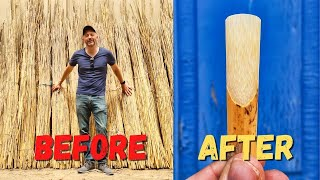 Download Why are Saxophone Reeds So Expensive?   Rigotti Reed Factory Tour Video