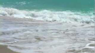 Download Relaxing Ocean Sounds w Seagulls Video