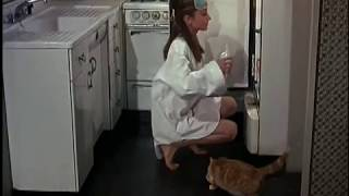 Download Documentary on Breakfast At Tiffany's movie Video