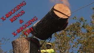 Download X Rigging Friction Tools 2015 Video