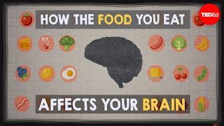 Download How the food you eat affects your brain - Mia Nacamulli Video