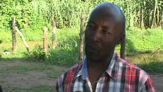 Download How to make money from Fish Farming Video
