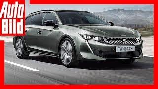 Download Peugeot 508 SW (2018) Details / Erklärung Video