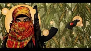 Download Alerta Antifascista (Antifascist Alert) ~ Zapatista Music Video