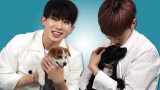 Download Monsta X Plays With Puppies While Answering Fan Questions Video
