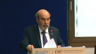 Download FAO'S Director-General remarks at the Global Conference on Peste des Petits Ruminants Eradication Video