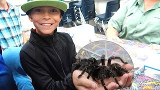 Download KID HOLDS BIGGEST SPIDER IN THE WORLD! Video