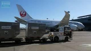 Download JALが成田空港で実証実験を行なう自動運転トーイングトラクター - トラベル Watch Video