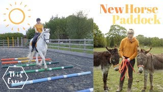 Download NEW HORSE PADDOCK for Summer + Tour | AD | This Esme Video