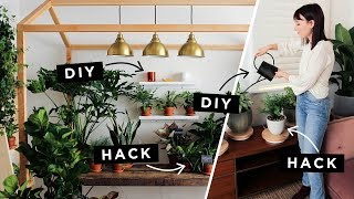 Download Lazy Girl Plant Hacks Video