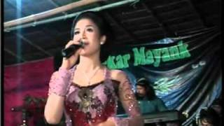 Download Sripat sripit,Ngimpi(etik ismail),by. Campusari Tokek Sekar Mayank(call:+628122598859) Video