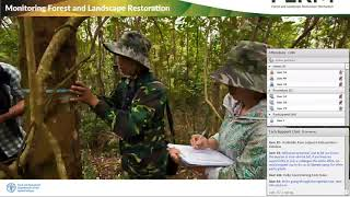 "Download Introduction to ""Innovative Approaches for Monitoring Forest and Landscape Restoration"" Video"