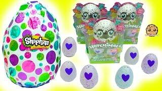 Download Hatchimals Hatching Surprise Blind Bag Baby Eggs + Giant Shopkins Egg Video