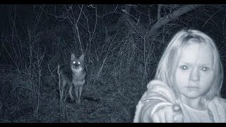 Download Top 15 Creepiest pics accidentally captured on trail cameras - Unsolved Secret Video