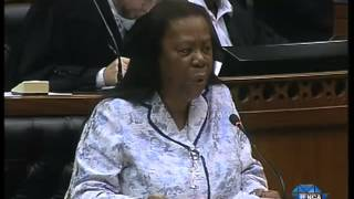 Download Gupta Debate: Opposition parties are afraid of the truth - Pandor Video