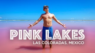 Download LAS COLORADAS PINK LAKE - Mexico Video