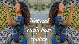 Download MY CURLY HAIR ROUTINE Video