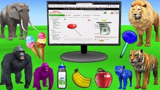 Download Learn wild Animals Online Shopping For Kids Buying Groceries | Kids Pretend Play Toys Learn Colors Video
